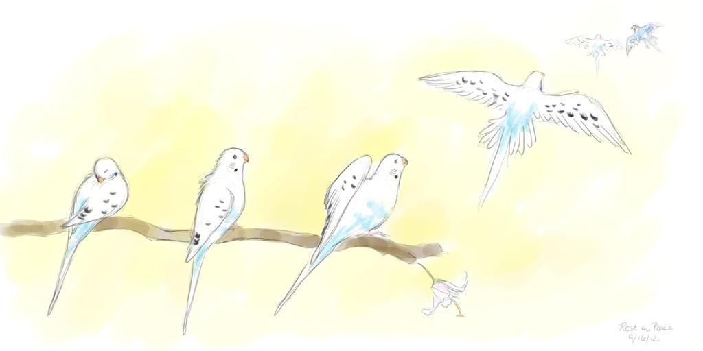 rest in peace little bird by meihua