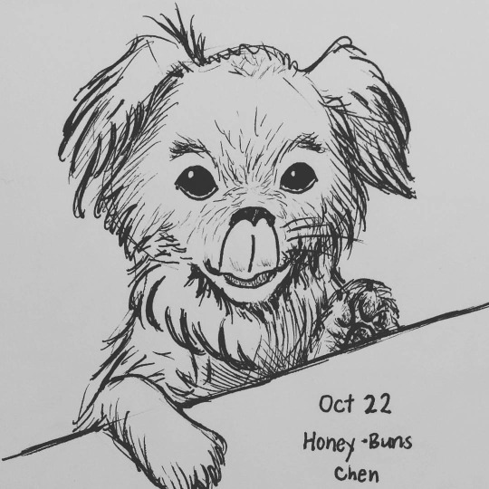 Inktober day 22 - Honey Buns by meihua