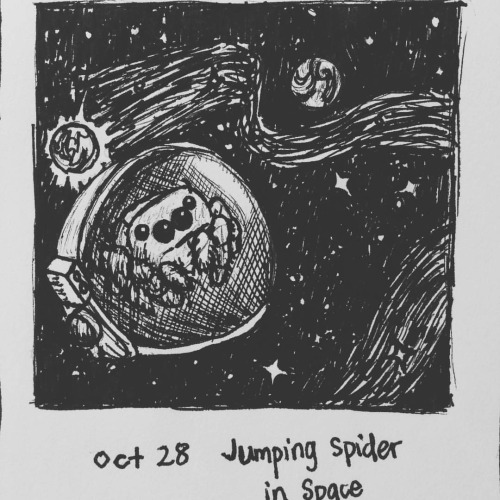 Inktober day 28 - Jumping Spider In Space by meihua