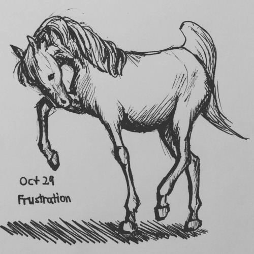 Inktober day 29 - Horse by meihua