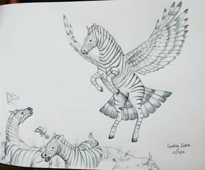 Inktober day 30 - Landing Zebra