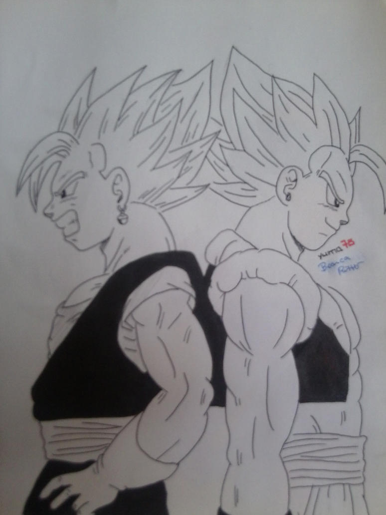 Gogeta and Vegetto by Yuma76
