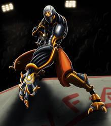 Shaolin robot