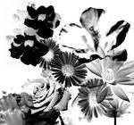 Artistic Floral