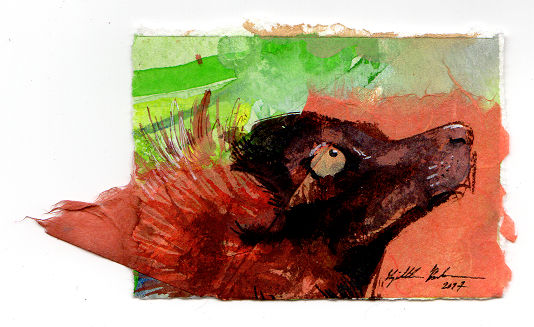 Collage Red Ruffed Lemur ACEO