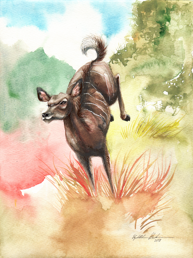 Dancing Kudu by Redwall151