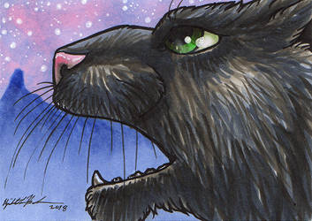 Shadow Cat ACEO
