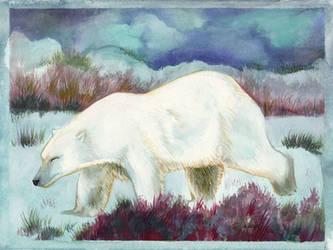Polar Wandering by Redwall151