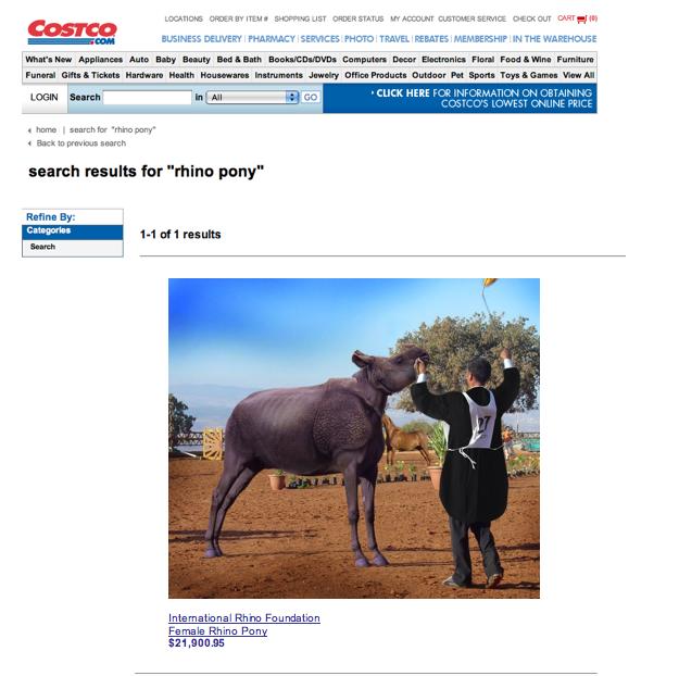 Buy a Rhino Pony by chocolatte-love28