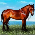 Horseisle Wild Dole