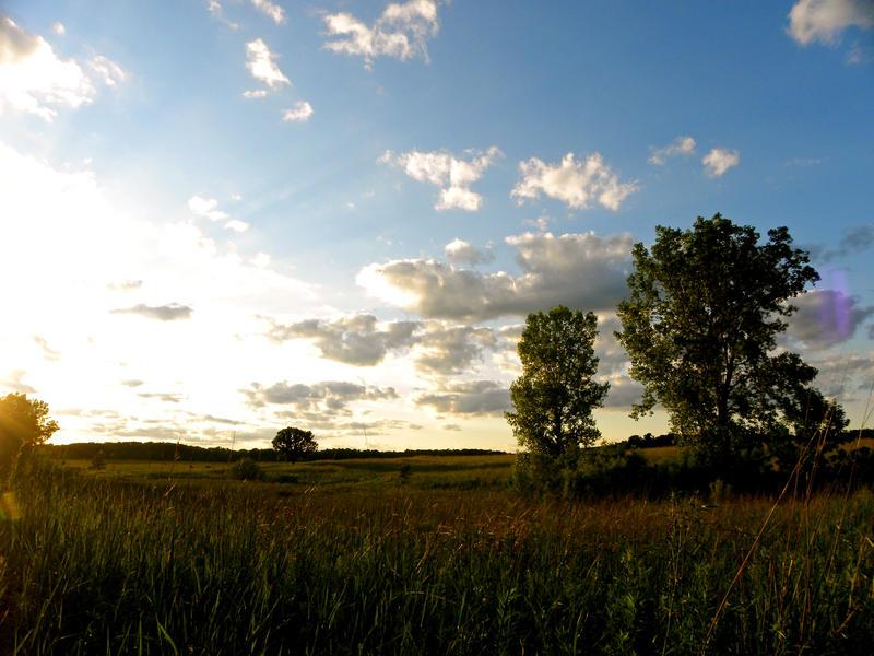 Summer Skies by soyrwoo