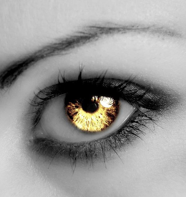The Eye of a Cullen by ShinriUchiha69