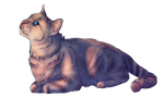 StarClan will guide us (Commission)