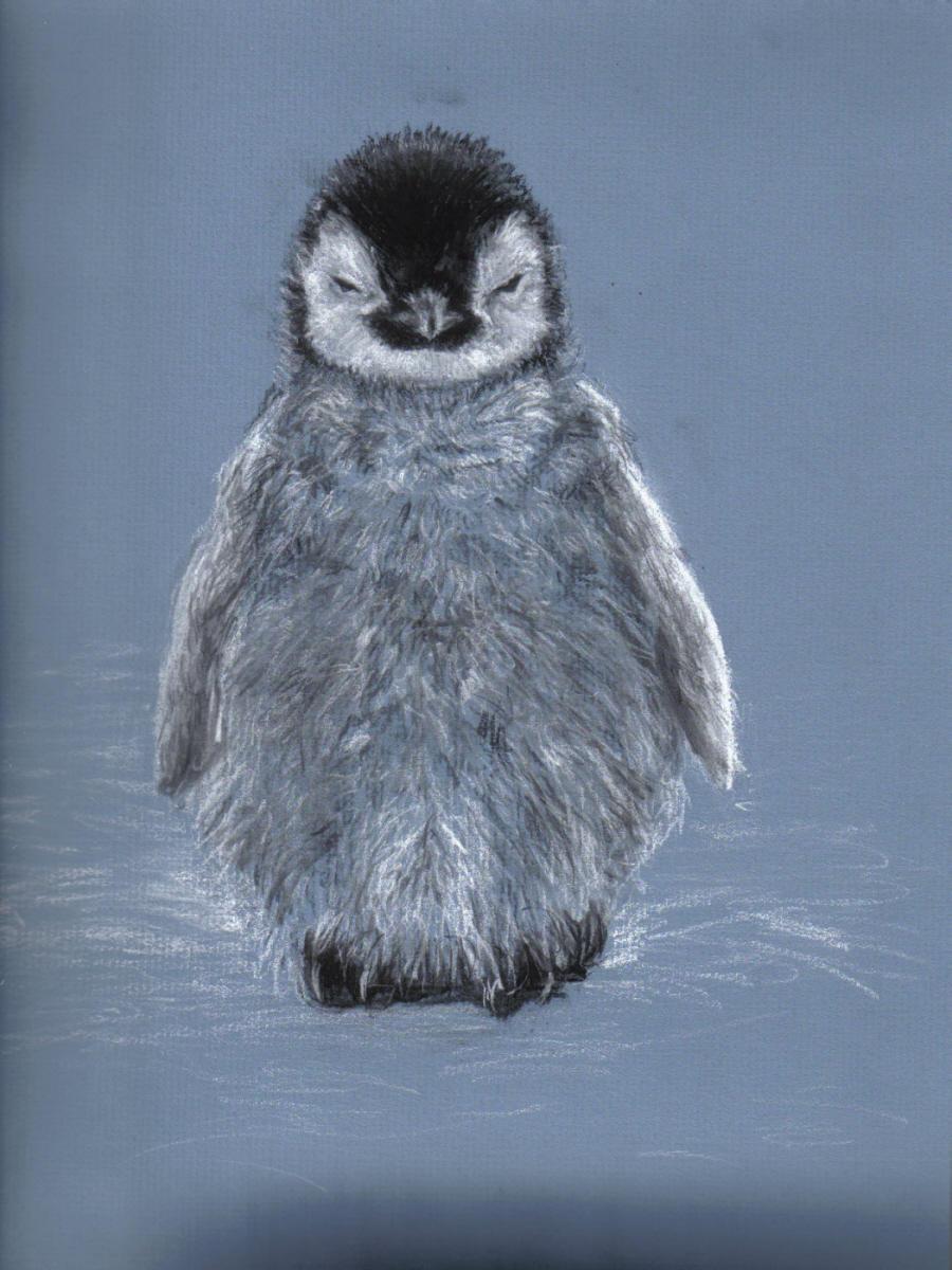 Baby penguin art - photo#6