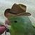 Cowboy Bird Icon