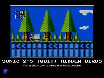 Sonic 2 Hidden Birds