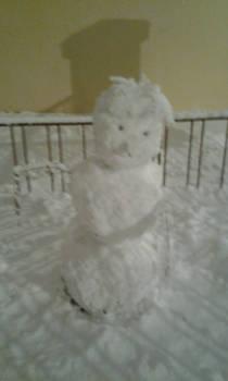 snowman du 15/01/2013
