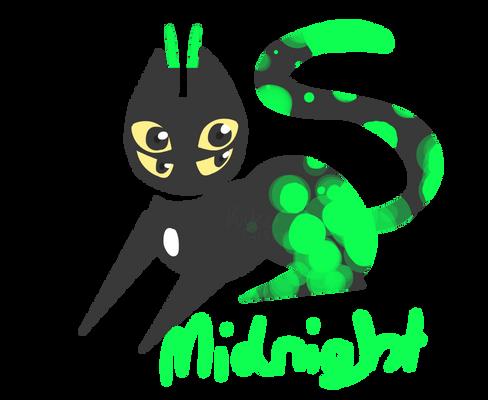 Miiddi