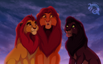 The lions of the Pride