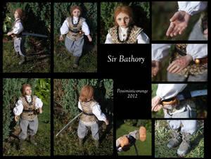 Sir Bathory McAllister