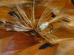 Copper Hackle Fly
