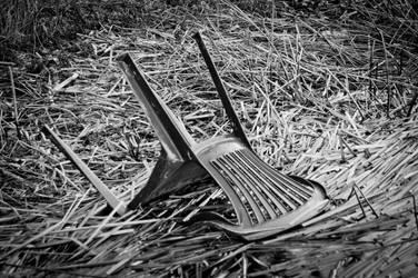 Chair polution