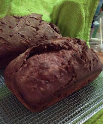 Chocolate sourdough with cherries and chocolate ch