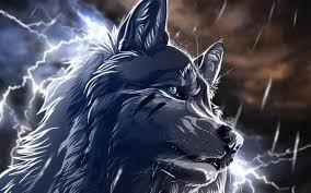 wolf drawing :3 by mrfatsheep