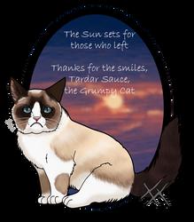 Grumpy Cat by RavenGuardian13