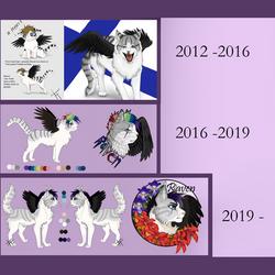 Raven's History