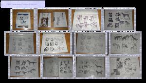 .: Ginga Studio sheets: Handouts etc :.