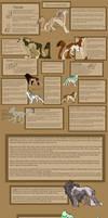 .: Wagphon: Species Ref Sheet :. by BeachBumDunkin