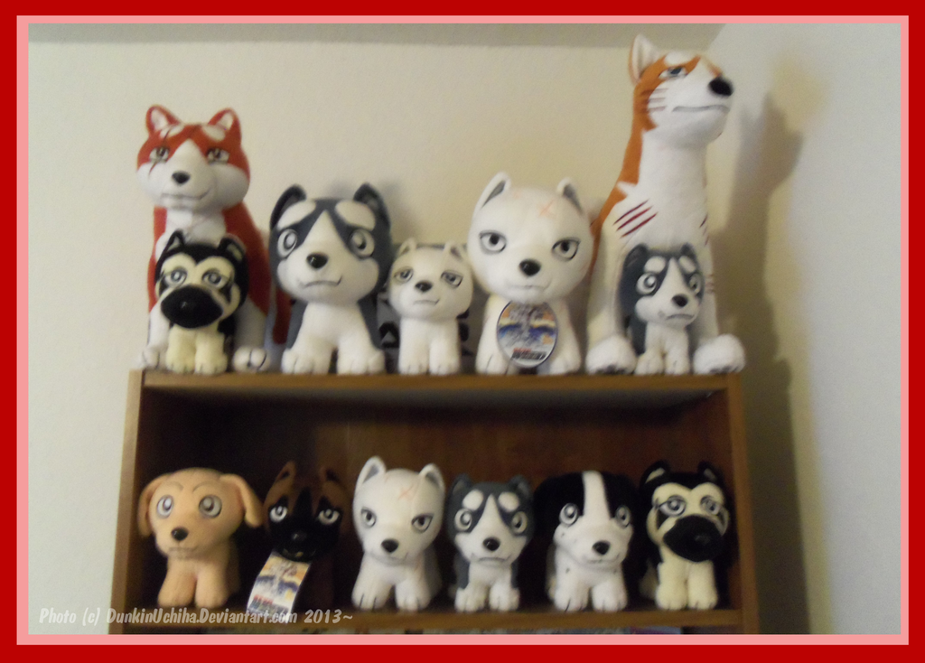 .: Ginga Plush Collection: 10/20/2013 :. by BeachBumDunkin