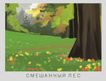 2.3. MIXED FOREST