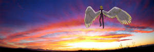 ST FF - A Mojave Sunset