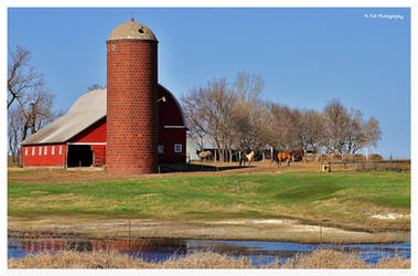 Country Livin' by erbphotography