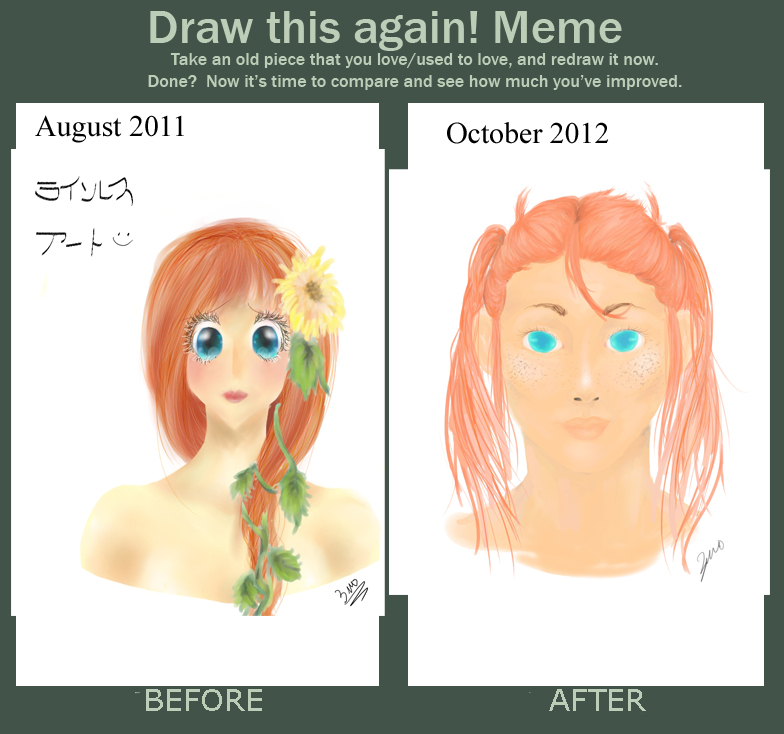 Improvement Meme 2011-2012 by 3moBunni