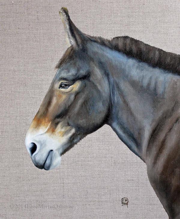 Mule by DrawforToffee