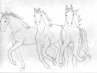 WIP: 3 Horses