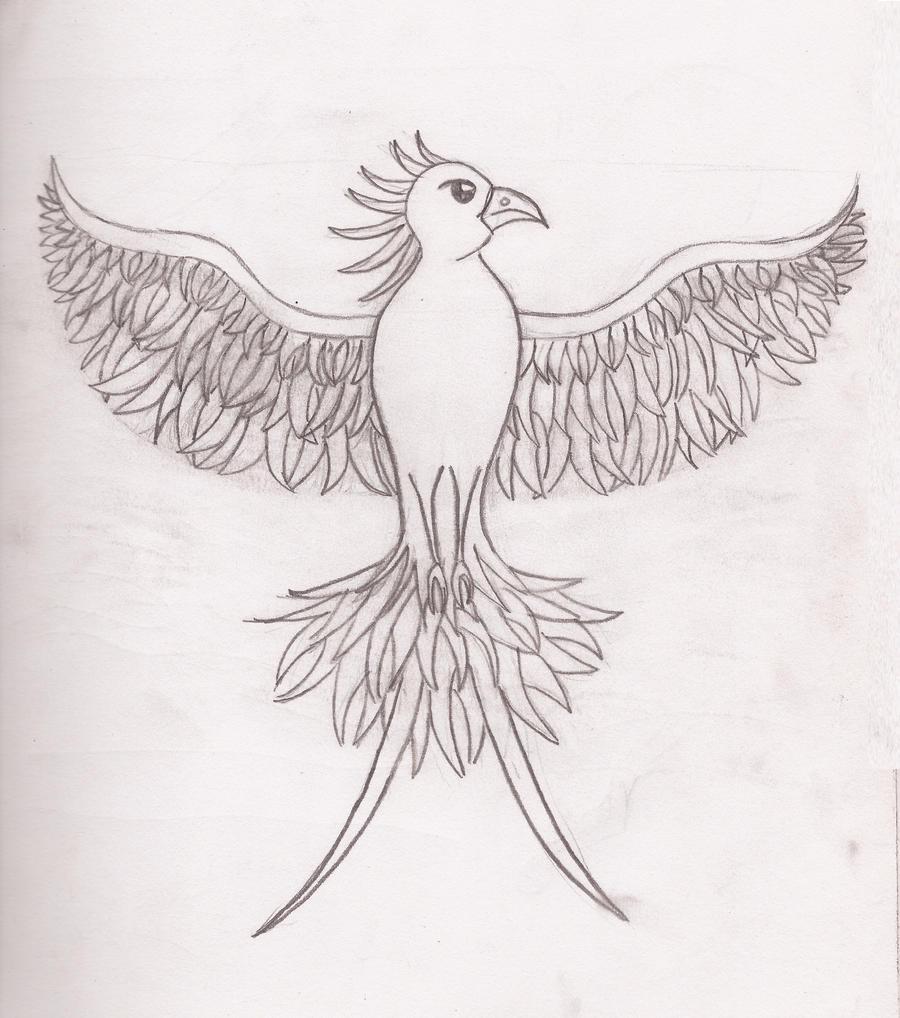 Phoenix Drawing In Pencil | www.imgkid.com - The Image Kid ...