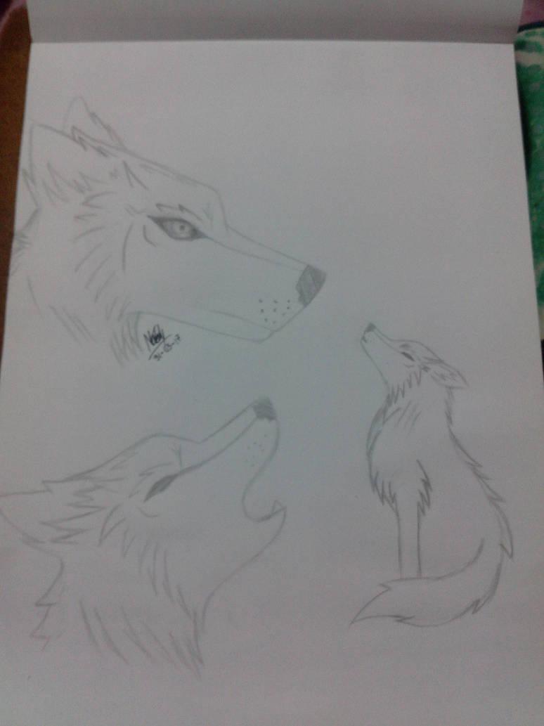 Dibujo A Lapiz Lobo By Linkgirlog On Deviantart