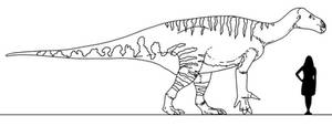 Stem-Bird Files: Iguanodon