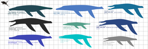 ''Toothy Toothy Whales Mk.III''