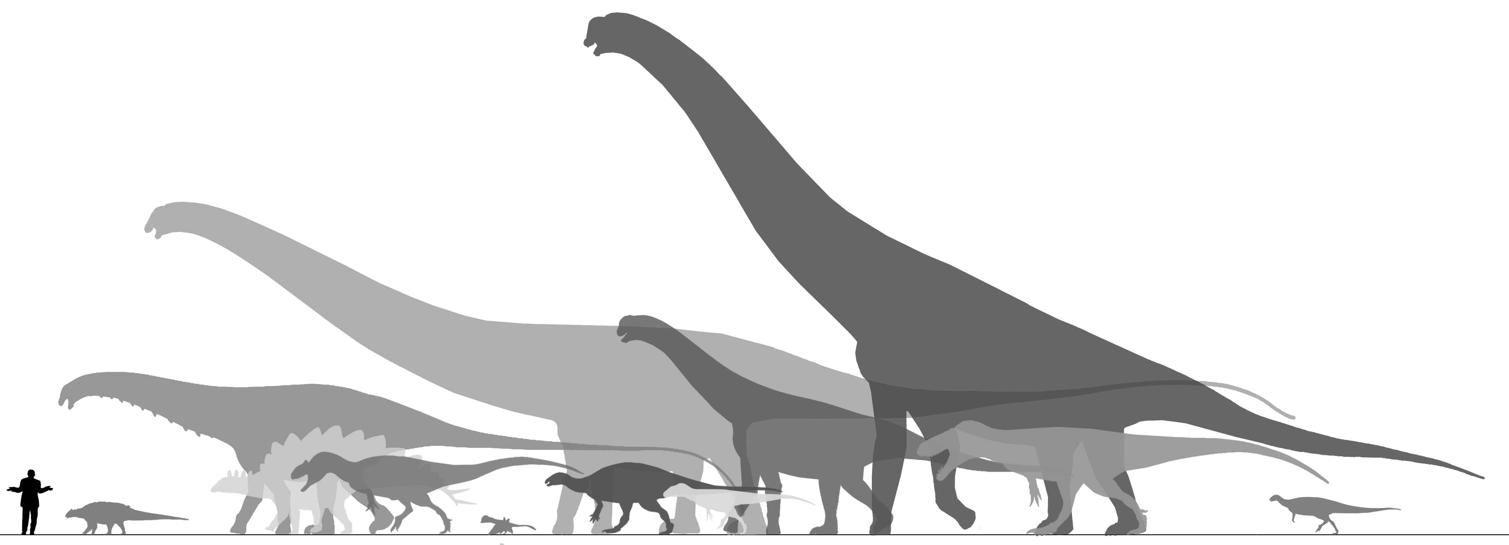 WWD - Morrison Formation by randomdinos