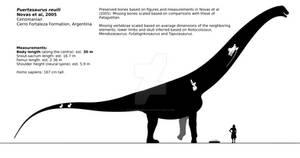 Puertasaurus reuili schematic.