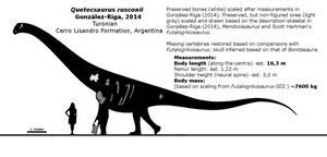 Quetecsaurus rusconii schematic. by randomdinos