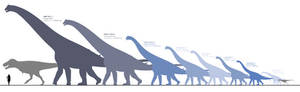 Sauropods of Maastrichtian North America