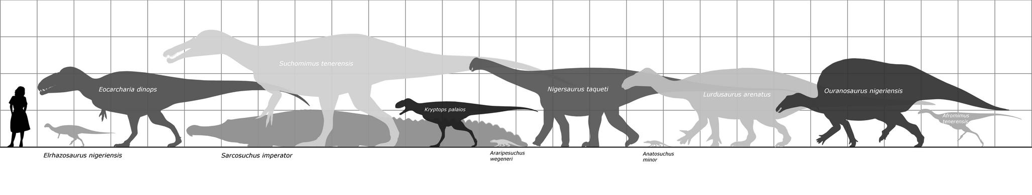 Elrhaz Formation taxa by randomdinos