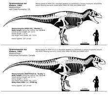 Tyrannosaurus rex skeletal reconstructions.