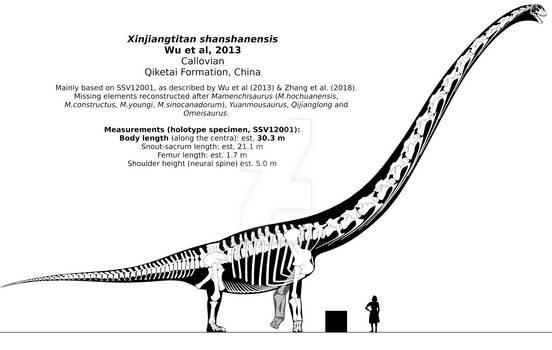 Xinjiangtitan shanshanensis skeletal.